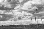 Mersea Island (9 of 17)